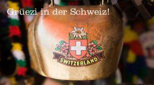 Webhosting und Domains aus der Schweiz